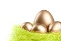 Golden eggs are in the nest of sisal filler Royalty Free Stock Photos
