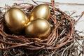 Golden eggs in nest Royalty Free Stock Photo