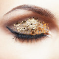 Golden eye makeup close up shot of female face with vogue shining Stock Image