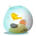 Golden fish bowl aquarium with Stock Photos