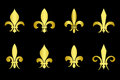 Golden fleur de lis set black background