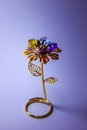Golden flower Royalty Free Stock Photo