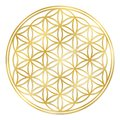 Golden Flower Of Life Royalty Free Stock Photo