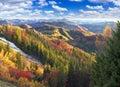 Golden Forest Ridge Sokilsky