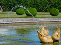 Golden fountain dolphin with flowing water. Stock Photography