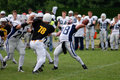 Golden Fox - Budapest Cowboys football match Royalty Free Stock Photography