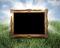 Golden frame in grass Royalty Free Stock Photo