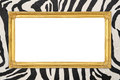Golden frame  with zebra texture background Royalty Free Stock Photo