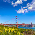 Golden gate bridge san francisco from presidio california in usa Royalty Free Stock Photography