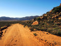 Golden gate national park south africa landscape and road Stock Images