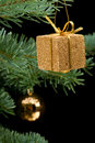 Golden gift box on pine branch Royalty Free Stock Photos