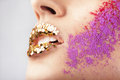 Golden glitters on lips and pink and red powder on cheek Royalty Free Stock Image