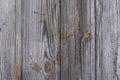 Golden gray wood texture