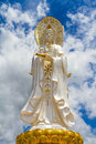 Golden Guan Yin Stock Images
