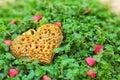 Golden heart on the green grass Imagens de Stock