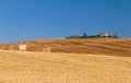 Golden hills Tuscany Royalty Free Stock Photo
