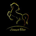 Golden horse silhouette illustration Royalty Free Stock Image