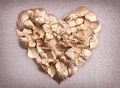 Golden hydrangea  flower petals  in the shape of a heart Stock Image