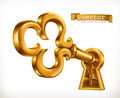 Golden key in keyhole, vector icon