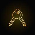 Golden keys icon