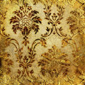 Golden lace Royalty Free Stock Images