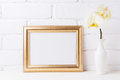 Golden  landscape frame mockup with soft yellow orchid in vase Royalty Free Stock Photo