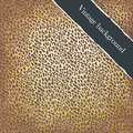 Golden leather vintage background. Stock Images