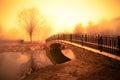 Golden Morning Pond Royalty Free Stock Photo