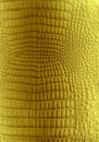 Golden reptile leather texture Royalty Free Stock Image