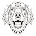 Golden retriever dog zentangle stylized head, freehand pencil, h