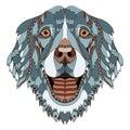 Golden retriever dog zentangle stylized head, freehand pencil, h