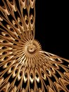 Golden rosette 2 Royalty Free Stock Images