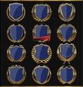 Golden shields labels and laurels dark blue edition illustration Stock Images