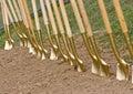 Golden Shovels Royalty Free Stock Photo