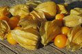Golden Strawberry (Physalis) Stock Photography