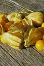 Golden Strawberry (Physalis) Royalty Free Stock Images
