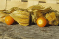 Golden Strawberry (Physalis) Royalty Free Stock Photo