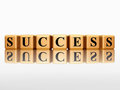 Golden success with reflection Royalty Free Stock Image