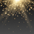 Golden Sun Rays Royalty Free Stock Photo