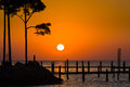 Golden sunrise over shalimar spring the gulf of mexico with silhouetted trees and a pier in the foreground Royalty Free Stock Image