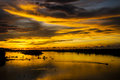 A golden sunset near fishing village at tuaran sabah malaysia Royalty Free Stock Image