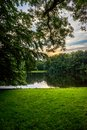 Golden sunset over a lake with trees and grass at Haagse Bos, fo Royalty Free Stock Photo