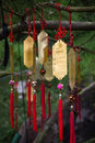 Golden Taoist prayer charms hanging from a tree Royalty Free Stock Photo
