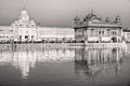 Golden temple in amritsar punjab india people at Stock Photo