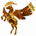 Golden Winged Horse Royalty Free Stock Images