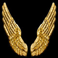 Golden Wings Stock Photos
