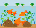Goldfish Aquarium Stock Image