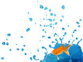 Goldfish Splashing on Bule Liquid Stock Images