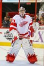 Goleiros jimmy howard dos detroit red wings Fotografia de Stock