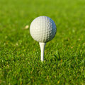 Golf ball close up Stock Image